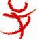 弘光文化系